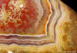"Fairburn Agate - South Dakota Rockhound - ""Cyclops"""