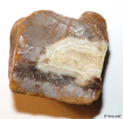White Fairburn Agate