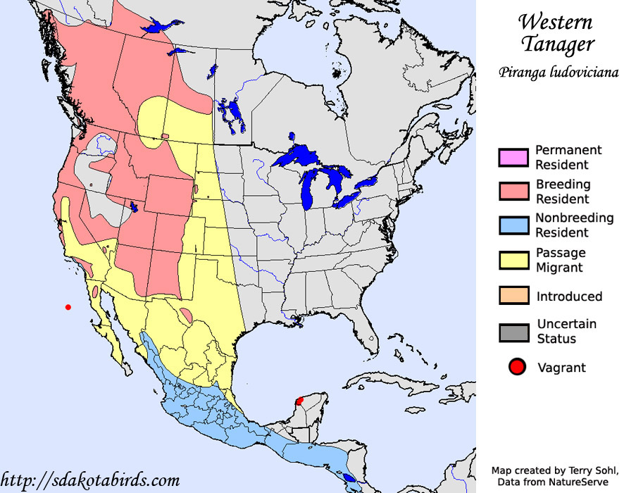 Tanager Range Western Tanager Range Map